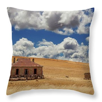 Throw Pillow featuring the photograph Burra by Tim Nichols