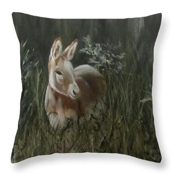 Burro In The Wild Throw Pillow