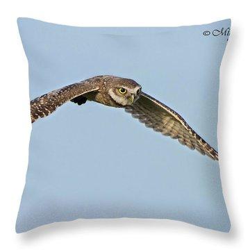 Burrowing Owl In Flight Throw Pillow