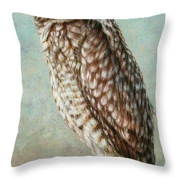 Burrowing Owl Throw Pillow by James W Johnson