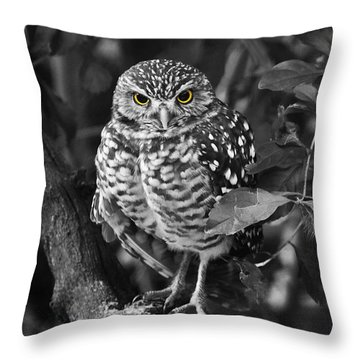Burrowing Owl  Selective Color Eyes Throw Pillow by Judy Wanamaker