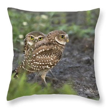Burrowing Owl Twins Throw Pillow