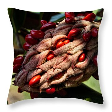 Bursting Forth Throw Pillow by Christopher Holmes