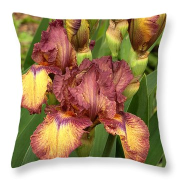 Throw Pillow featuring the photograph Bursting In Beauty by Sheila Brown
