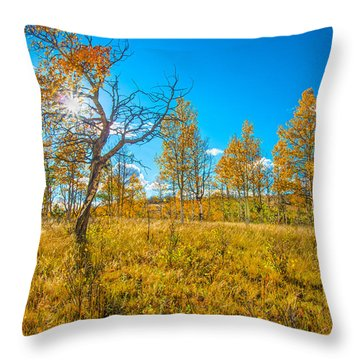 Bursting Through Gold  Throw Pillow