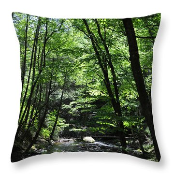 Bushkill Creek Throw Pillow