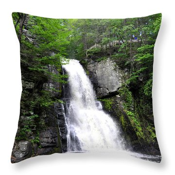 Bushkill Fall - Five Throw Pillow