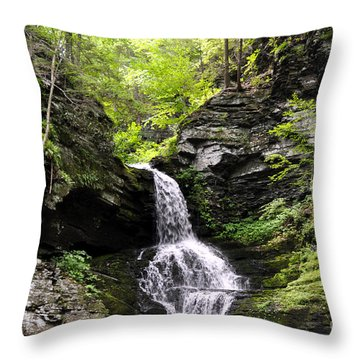 Bushkill Fall - Four Throw Pillow