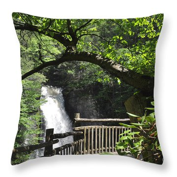 Bushkill Fall - One Throw Pillow