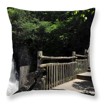Bushkill Fall - Two Throw Pillow
