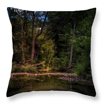 Busiek State Forest Throw Pillow