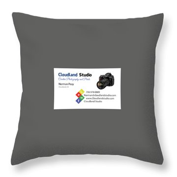 Business Card Throw Pillow