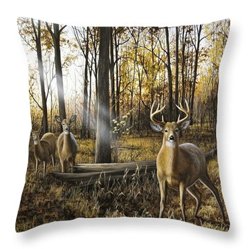 Busted Throw Pillow