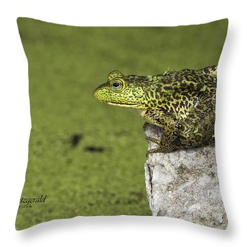 Buster On The Rocks Throw Pillow