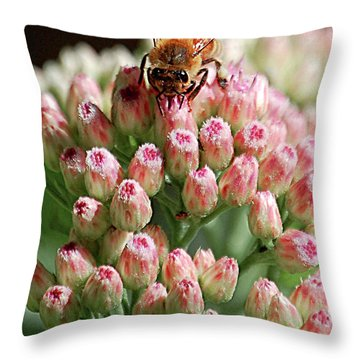 Busy Bee Throw Pillow by DigiArt Diaries by Vicky B Fuller