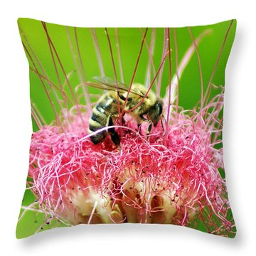 Busy Bee Throw Pillow by Holly Kempe