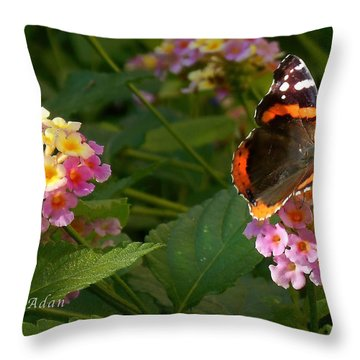 Throw Pillow featuring the photograph Busy Butterfly Side 1 by Felipe Adan Lerma