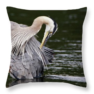 Busy Great Blue Heron Throw Pillow