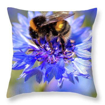 Busy Little Bee Throw Pillow