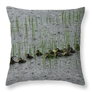 Busy Summer Ahead Throw Pillow