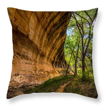 Butler Wash Wave Formation - Blanding - Utah Throw Pillow by Gary Whitton