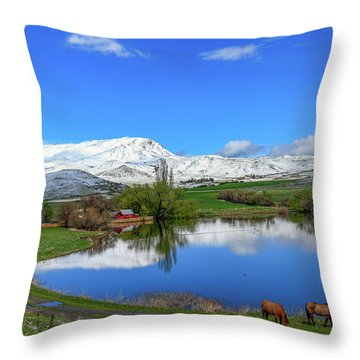 Throw Pillow featuring the photograph Butte Farm After Spring Snow by Robert Bales