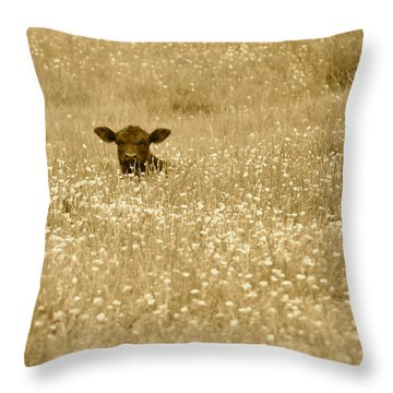 Buttercup In Sepia Throw Pillow