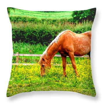 Buttercup Meadow Throw Pillow