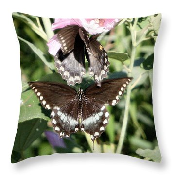 Butterflies Are Free 3 Throw Pillow