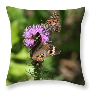 Butterflies And Purple Flower Throw Pillow