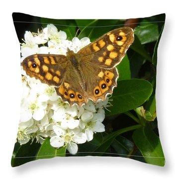Throw Pillow featuring the photograph Butterfly 1 by Jean Bernard Roussilhe
