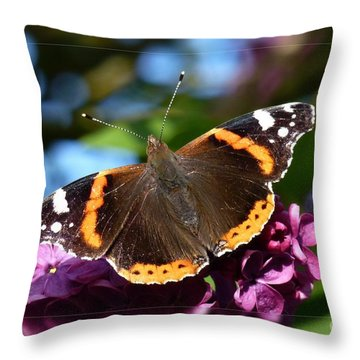 Butterfly 12 Throw Pillow by Jean Bernard Roussilhe