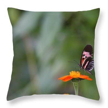 Butterfly 16 Throw Pillow