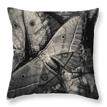 Butterfly #2056 Throw Pillow by Andrey Godyaykin