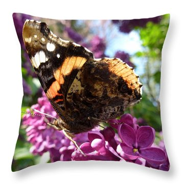 Butterfly 7 Throw Pillow