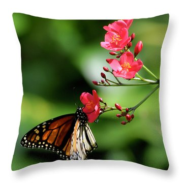 Butterfly And Blossom Throw Pillow