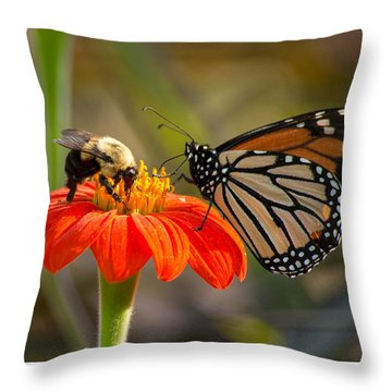 Throw Pillow featuring the photograph Butterfly And Bumble Bee by Willard Killough III