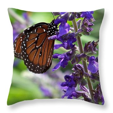 Throw Pillow featuring the photograph Butterfly And Purple Flowers by Carol  Bradley