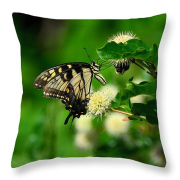 Butterfly And The Bee Sharing Throw Pillow