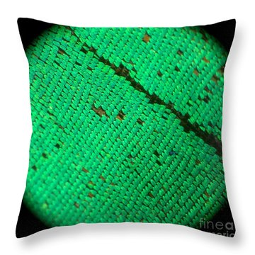 Butterfly Armor Throw Pillow