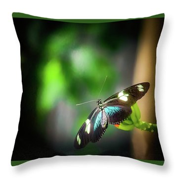 Throw Pillow featuring the photograph Butterfly At Cleveland Botanical Gardens by Richard Goldman