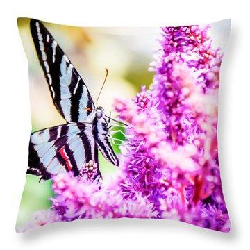 Butterfly Beautiful  Throw Pillow