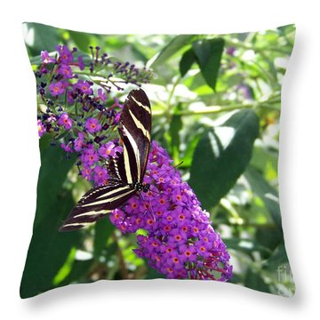 Throw Pillow featuring the photograph Butterfly by Charles Robinson