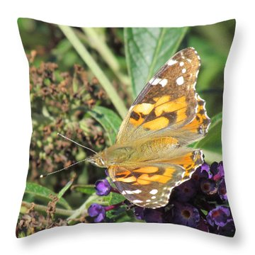 Butterfly Details Throw Pillow by Bonnie Muir