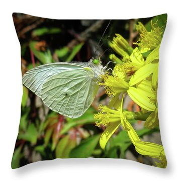 Butterfly Feasting On Yellow Flowers Throw Pillow