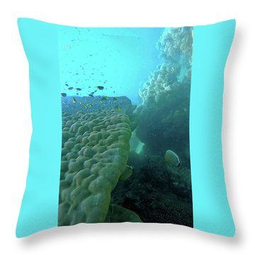 Butterfly Fish  Throw Pillow