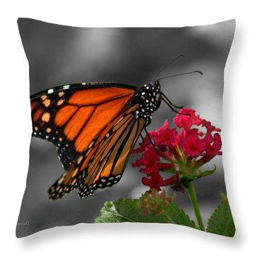 Throw Pillow featuring the photograph Butterfly Garden 01 - Monarch by E B Schmidt
