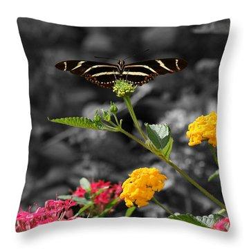 Throw Pillow featuring the photograph Butterfly Garden 05 - Zebra Heliconian by E B Schmidt