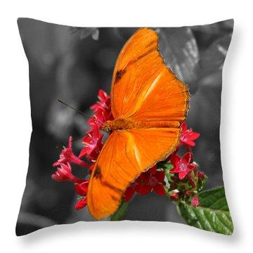 Throw Pillow featuring the photograph Butterfly Garden 16 - Julia Heliconian by E B Schmidt