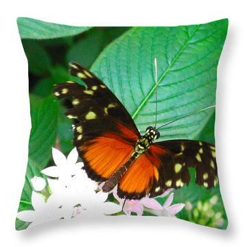 Butterfly House  Throw Pillow